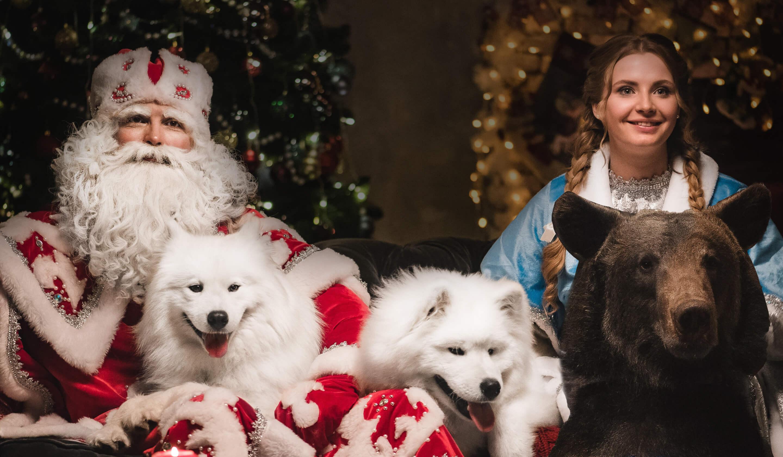 индивидуальное поздравление Деда Мороза